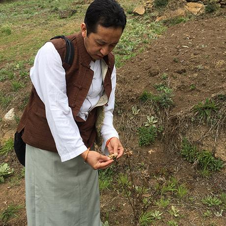 Dr. Sherab Tenzin at plants plantation