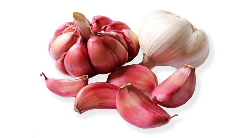 Garlic healing