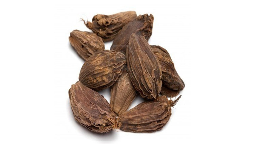 black cardamom healing herb