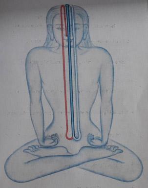 Sevenfols meditation Tibetian medicine Sowa Rigpa