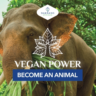 <b> Vegan Power • </b> Healthier Lifestyle